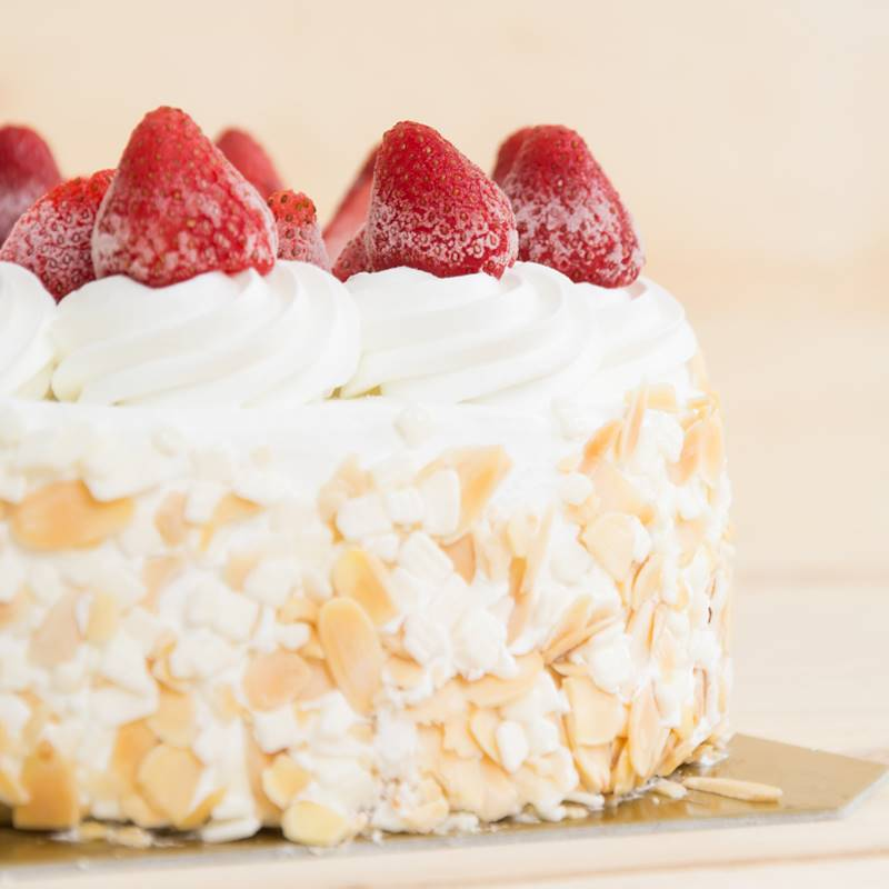 torta-mondo-dolce
